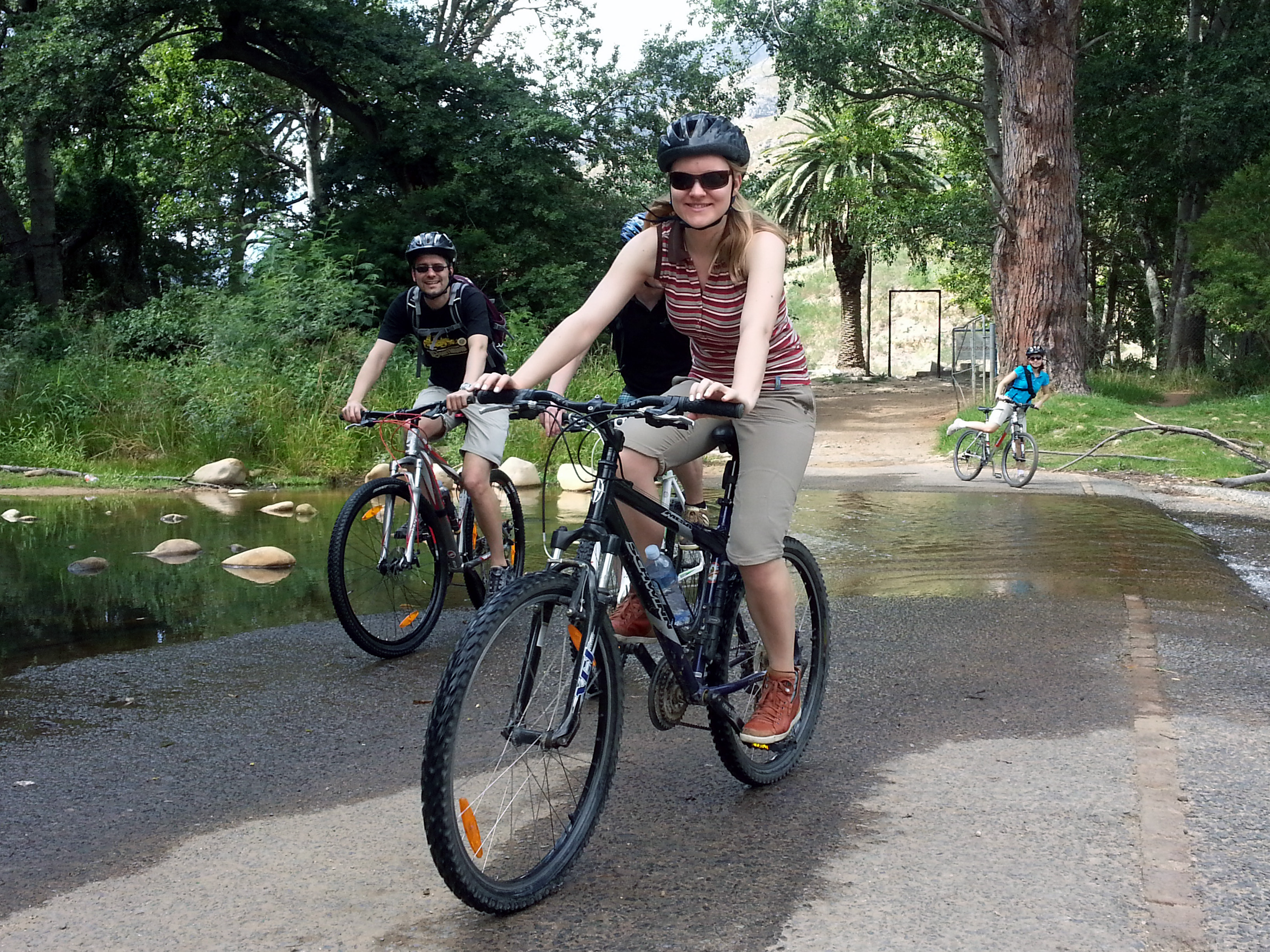 Guided Bicycle Tour in Stellenbosch