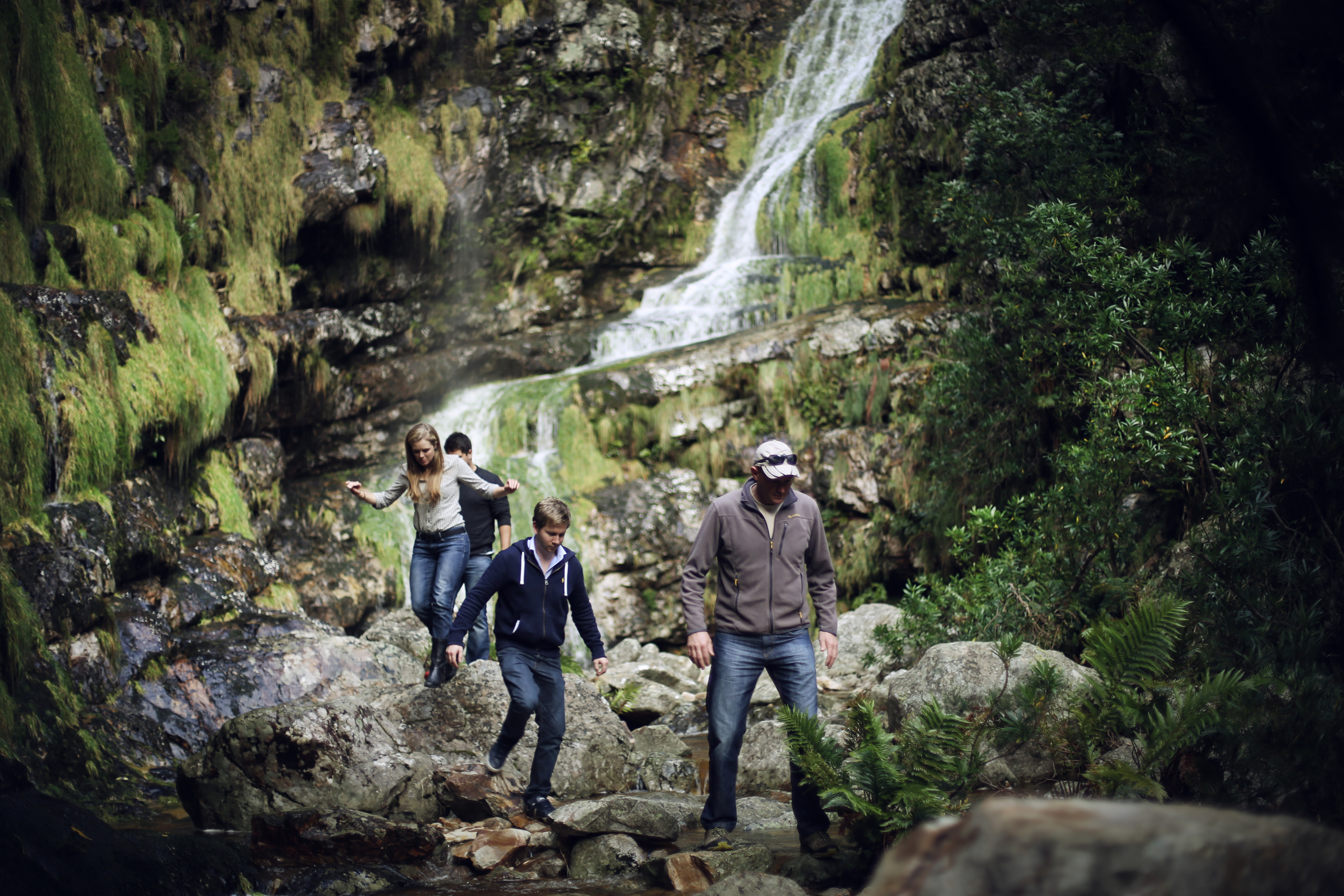 Guided Hikes in Stellenbosch